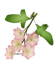 """Petite Garden Assortment - Pink and White Flowers w/2 Leaves - 2.95"""""""