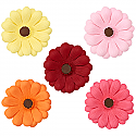 Gerbera Daisy - Yellow - 3""