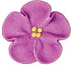 "Wild Rose - Purple - 1"""